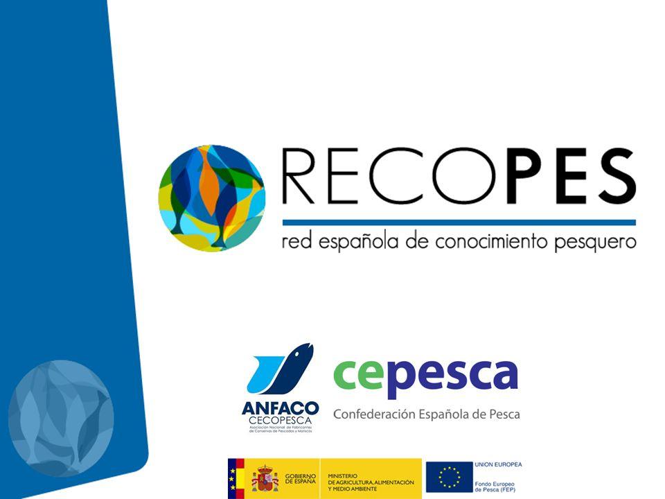 El Proyecto RECOPES es una iniciativa del sector privado, liderado por la Confederación Española de Pesca y ANFACO- CECOPESCA, en el marco de la convocatoria de Acciones Colectivas que pretendemos desarrollar durante los próximos tres años.