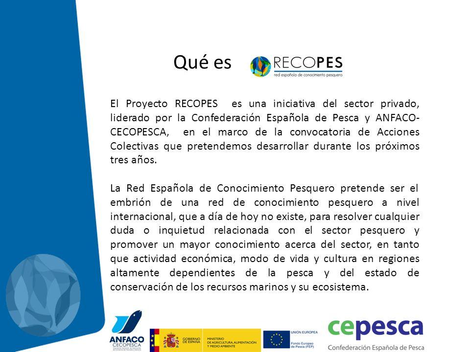 El Proyecto RECOPES es una iniciativa del sector privado, liderado por la Confederación Española de Pesca y ANFACO- CECOPESCA, en el marco de la convo