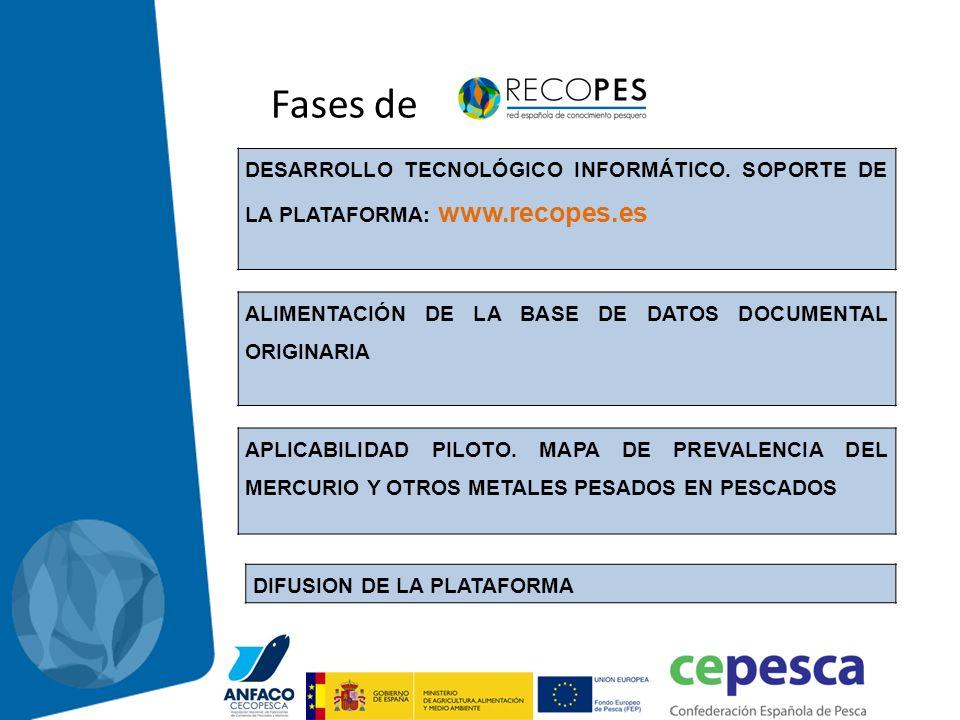 Fases de DESARROLLO TECNOLÓGICO INFORMÁTICO. SOPORTE DE LA PLATAFORMA: www.recopes.es APLICABILIDAD PILOTO. MAPA DE PREVALENCIA DEL MERCURIO Y OTROS M