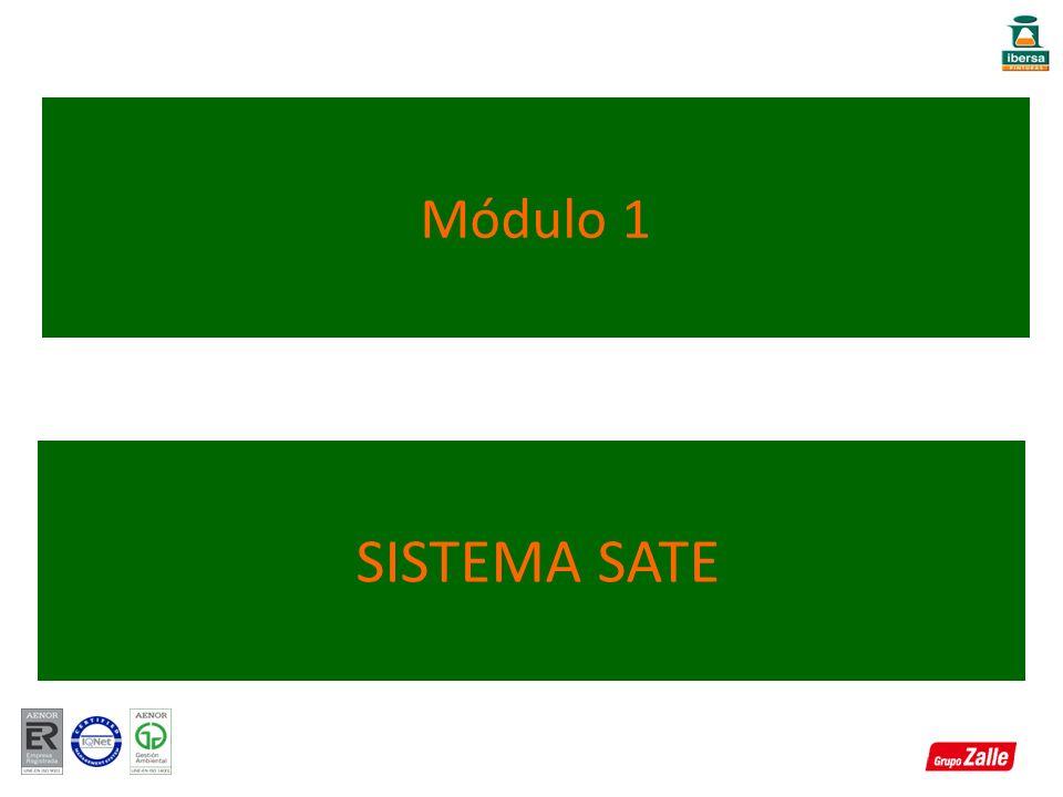 SISTEMA SATE Módulo 1