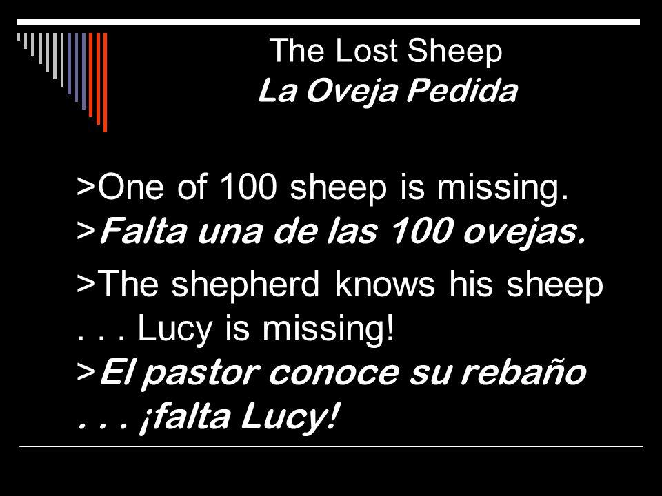 >One of 100 sheep is missing. > Falta una de las 100 ovejas. >The shepherd knows his sheep... Lucy is missing! > El pastor conoce su rebaño... ¡falta