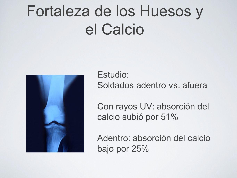 Fortaleza de los Huesos y el Calcio Estudio: Soldados adentro vs. afuera Con rayos UV: absorción del calcio subió por 51% Adentro: absorción del calci