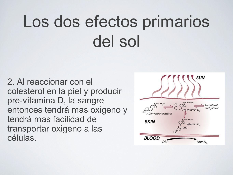 Los dos efectos primarios del sol 2. Al reaccionar con el colesterol en la piel y producir pre-vitamina D, la sangre entonces tendrá mas oxigeno y ten