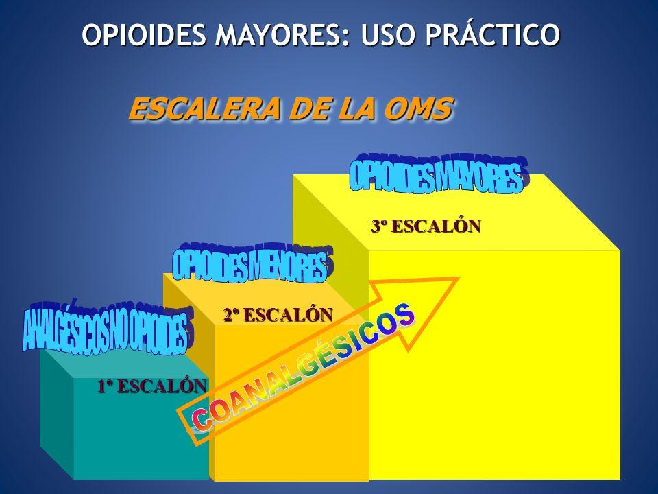 OPIOIDES MAYORES: USO PRÁCTICO ESCALERA DE LA OMS 1º ESCALÓN 2º ESCALÓN 3º ESCALÓN