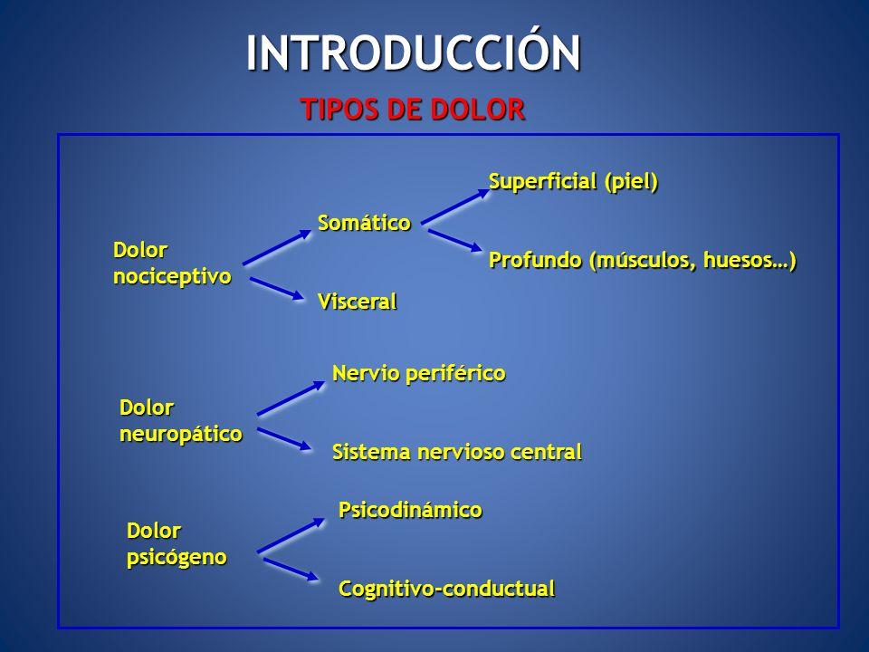 INTRODUCCIÓN TIPOS DE DOLOR Dolornociceptivo SomáticoVisceral Superficial (piel) Profundo (músculos, huesos…) Dolorneuropático Nervio periférico Siste