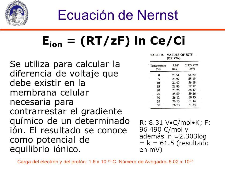 Ecuación de Nernst Se utiliza para calcular la diferencia de voltaje que debe existir en la membrana celular necesaria para contrarrestar el gradiente