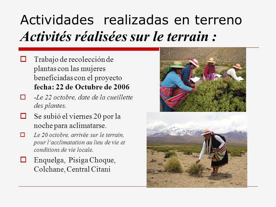 Actividades realizadas en terreno Activités réalisées sur le terrain : Trabajo de recolección de plantas con las mujeres beneficiadas con el proyecto