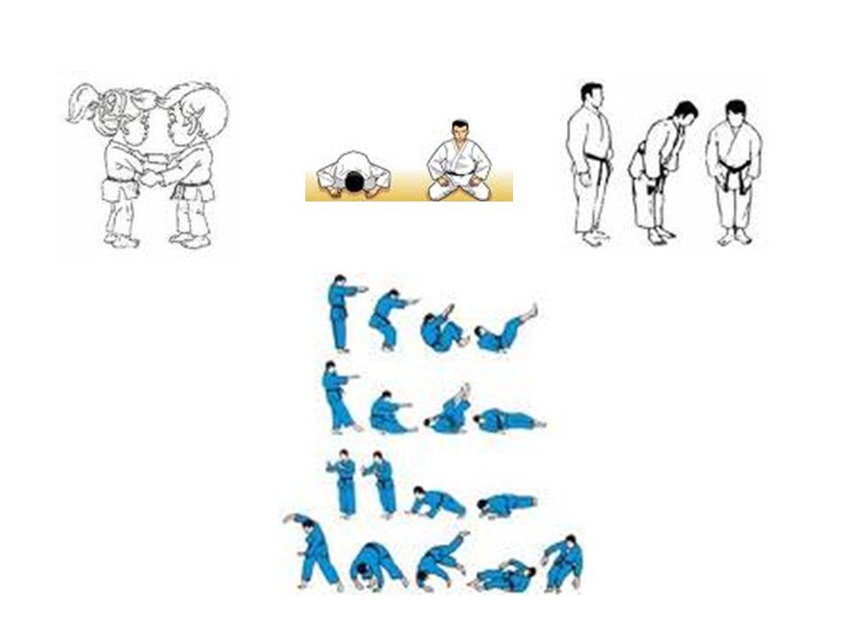 Vestimenta La vestimenta usada en el judo recibe el nombre de judogi, y con el cinturón (obi).judogi Los colores pueden variar, podría ser un judogi azul o uno blanco, el color azul o cualquier otro color que no sea el blanco solo se puede usar en competiciones en las cuales se permita, pero nunca para la realización de los katas.judogi