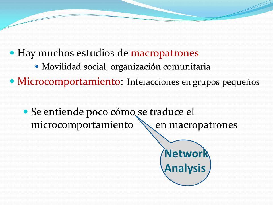 Hay muchos estudios de macropatrones Movilidad social, organización comunitaria Microcomportamiento: Interacciones en grupos pequeños Se entiende poco