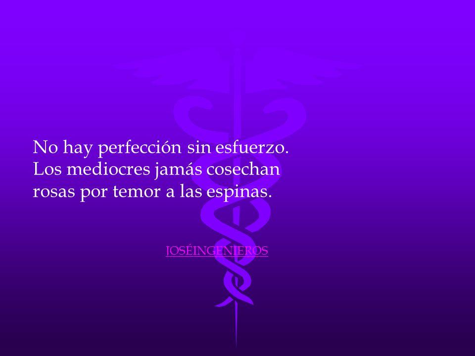 No hay perfección sin esfuerzo. Los mediocres jamás cosechan rosas por temor a las espinas. JOSÉINGENIEROS