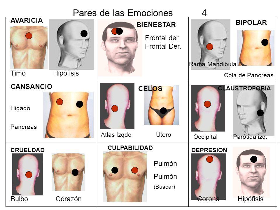 DEPRESION MASTOIDES HIPOFISIS DETRÁS LOBULO OREJA CENTRO DE FRENTE DEPRESION MAX.SUP.DERE.
