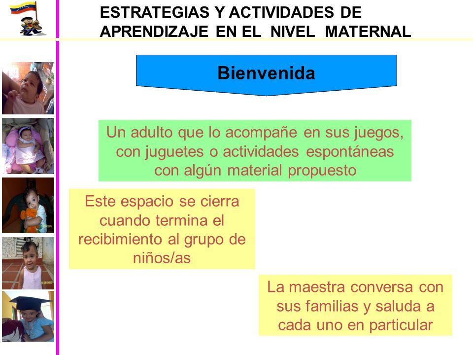 ESTRATEGIAS Y ACTIVIDADES DE APRENDIZAJE EN EL NIVEL MATERNAL Juegos para niños/as lactante mayor Actividades de atención y observación
