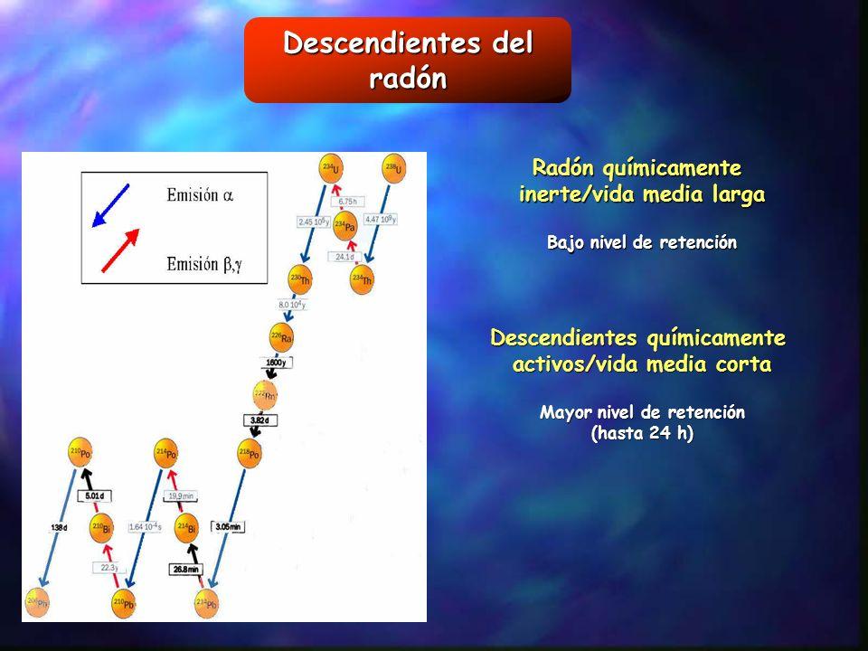 Descendientes del radón Radón químicamente inerte/vida media larga Bajo nivel de retención Descendientes químicamente activos/vida media corta Mayor n