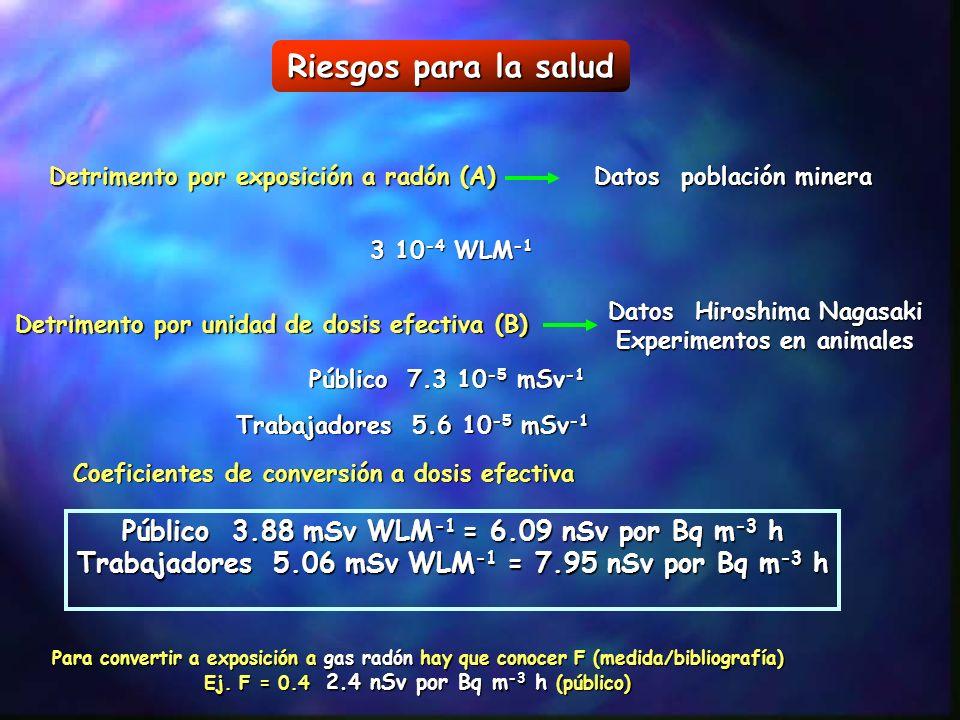 Riesgos para la salud Detrimento por exposición a radón (A) Datos población minera 3 10 -4 WLM -1 Detrimento por unidad de dosis efectiva (B) Datos Hi