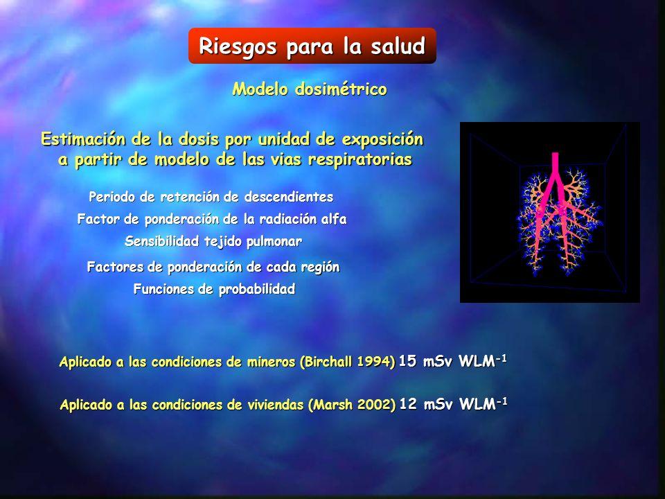 Riesgos para la salud Modelo dosimétrico Estimación de la dosis por unidad de exposición a partir de modelo de las vias respiratorias Periodo de reten