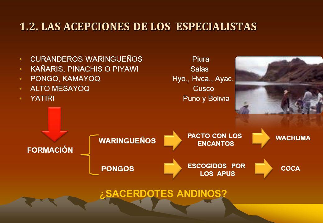 1.1. LA ACEPCION DE LOS DIOSES ANDINOS ENCANTOPiura PONG O PONGELambayeque y Trujillo TAYTA AMITOCajamarquilla RAHU Y JIRKAAncash AUKILLO, JIRKAHuanuc