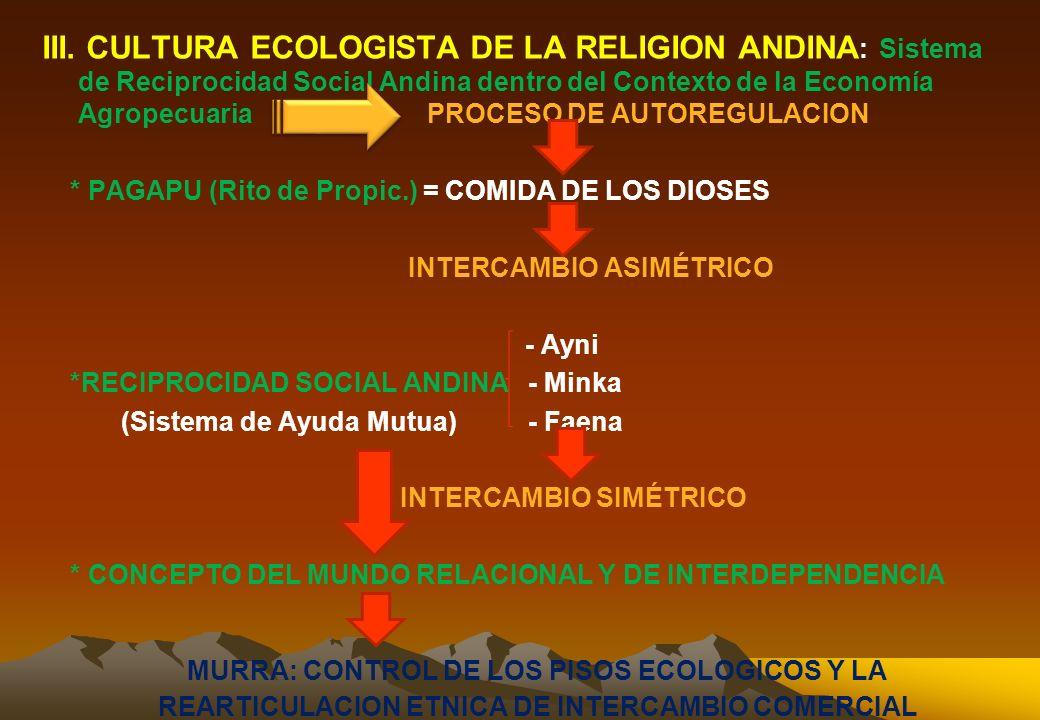 2.4. REPRESENTACION Y EL PRINCIPIO OPERADOR DE LOS DIOSES ANDINOS a. IDENTIDAD CULTURAL Y LAS FRONTERAS ETNICAS DIOSES LOCALES DIOSES REGIONALES ESTRU