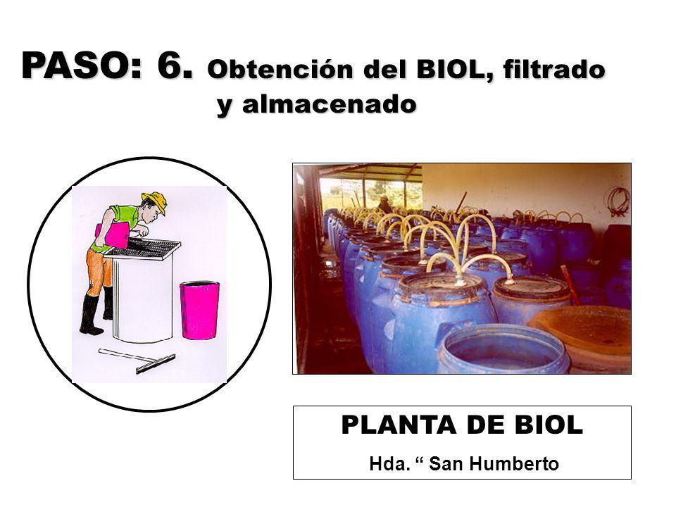 PASO: 6. Obtención del BIOL, filtrado y almacenado PLANTA DE BIOL Hda. San Humberto