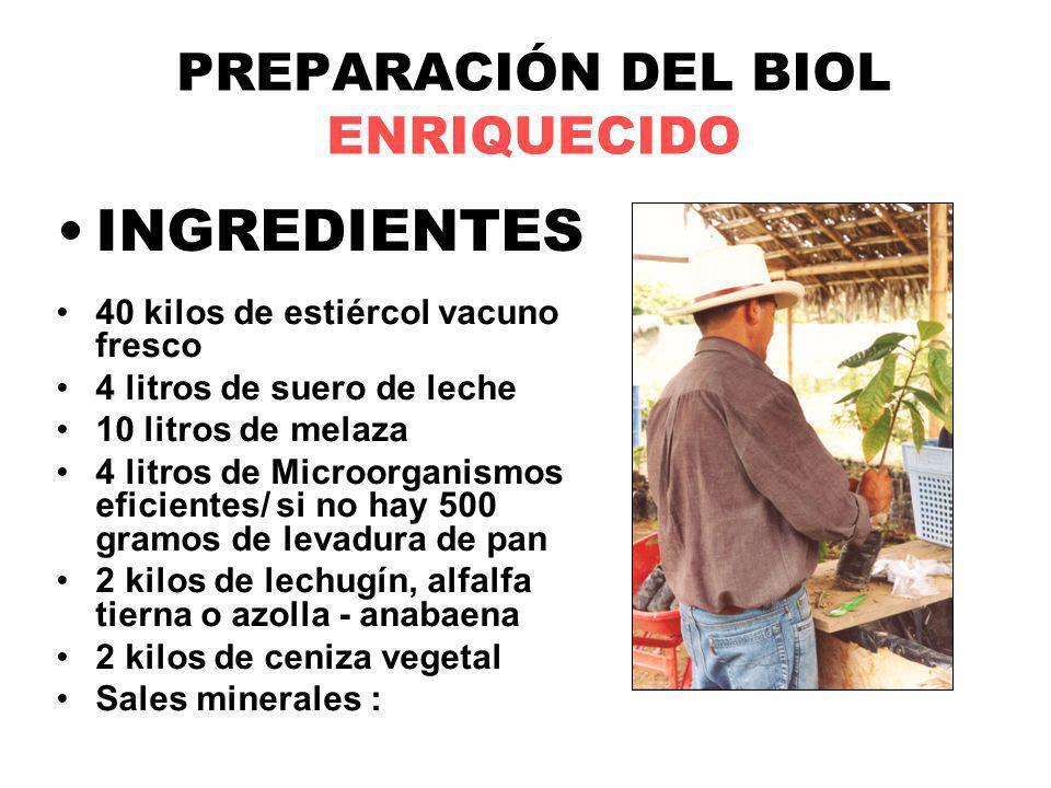 PREPARACIÓN DEL BIOL ENRIQUECIDO INGREDIENTES 40 kilos de estiércol vacuno fresco 4 litros de suero de leche 10 litros de melaza 4 litros de Microorga