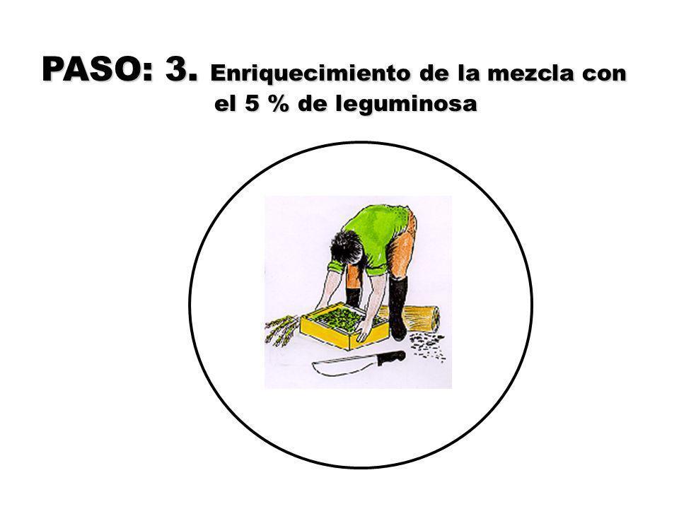 APLICACIÓN En la producción orgánica de cacao se puede aplicar el BIOL enriquecido de tres maneras : Al follaje : Dilución al 15 % (3 litros de BIOL en 20 litros de agua), utilizando una bomba de mochila/ 2 000 litros/ha/ cada 15 días Al follaje: Sin diluir 4 litros de BIOL puro por hectárea /semana, cuando se utiliza bomba a motor con boquilla electrostática de ultra bajo volumen.