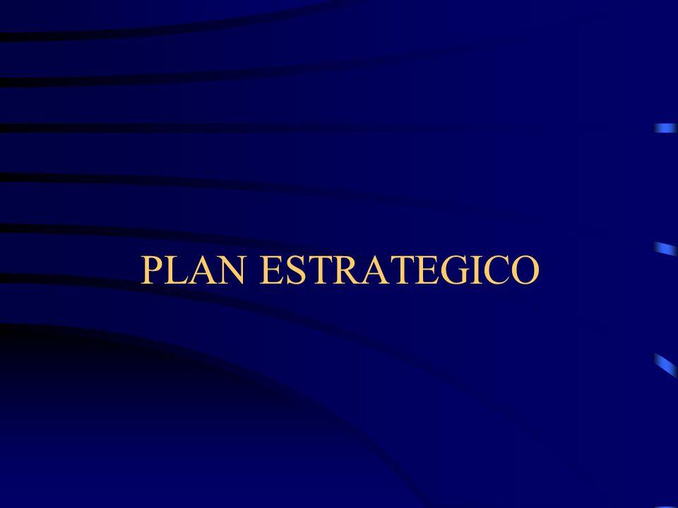 PLAN DE ACCION 9. Formular la Misión, … –Fijación de Políticas. –El propósito de las políticas es permitir a la compañía alcanzar los objetivos que el