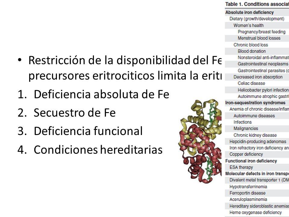 Restricción de la disponibilidad del Fe a los precursores eritrociticos limita la eritropoyesis 1.Deficiencia absoluta de Fe 2.Secuestro de Fe 3.Defic