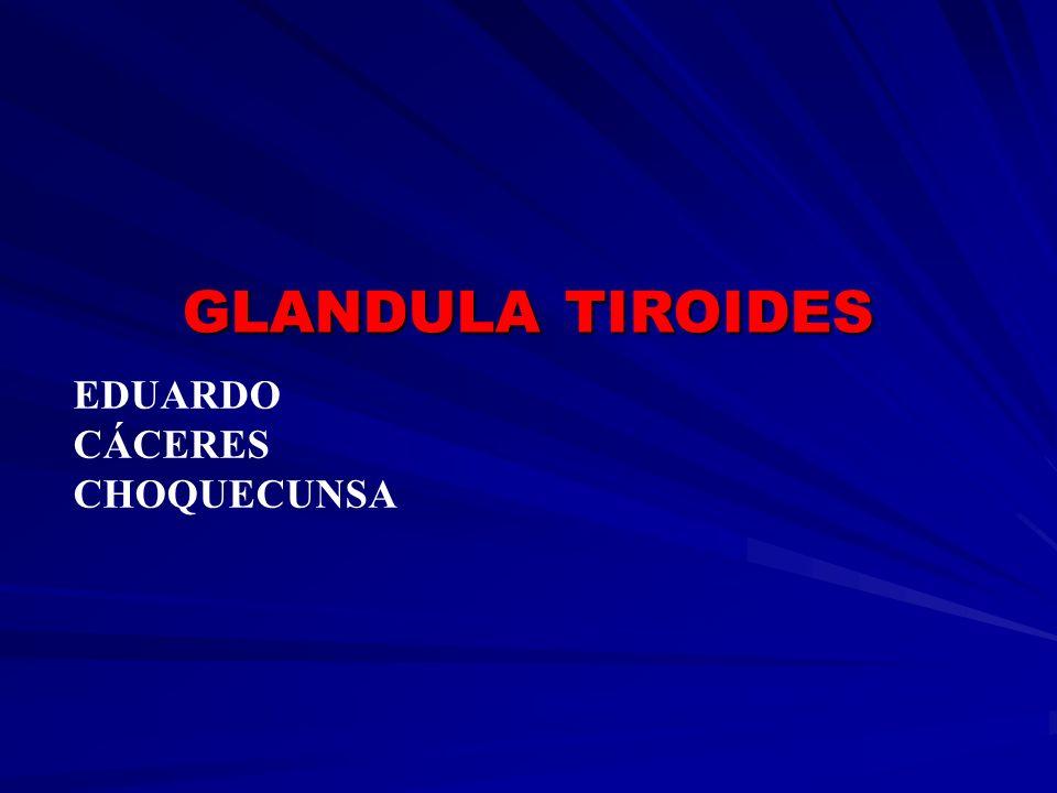 EDUARDO CÁCERES CHOQUECUNSA GLANDULA TIROIDES