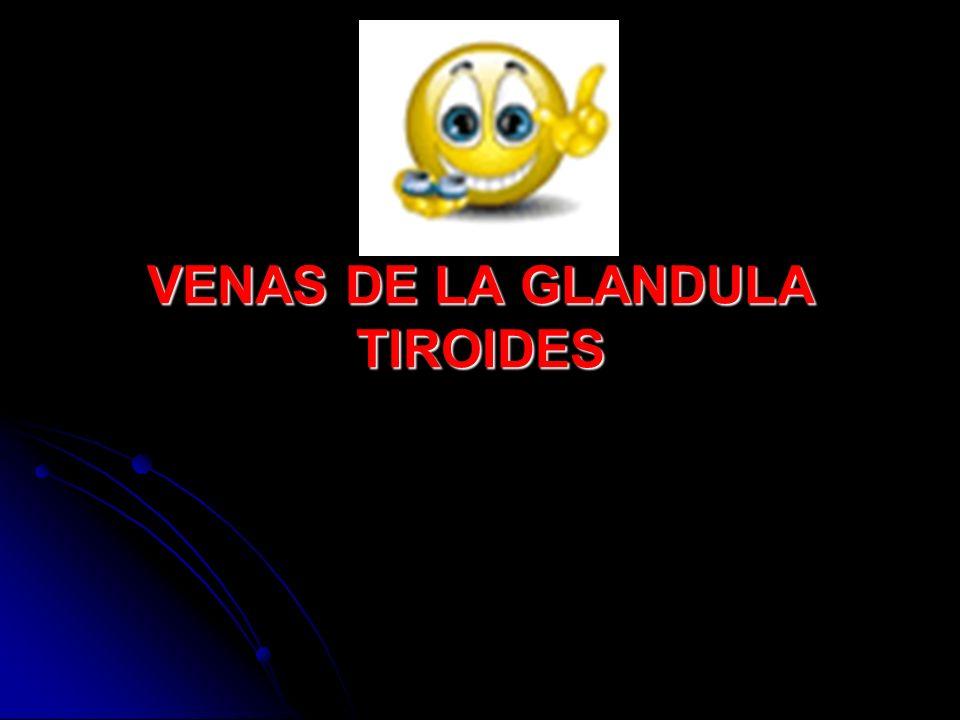 VENAS DE LA GLANDULA TIROIDES