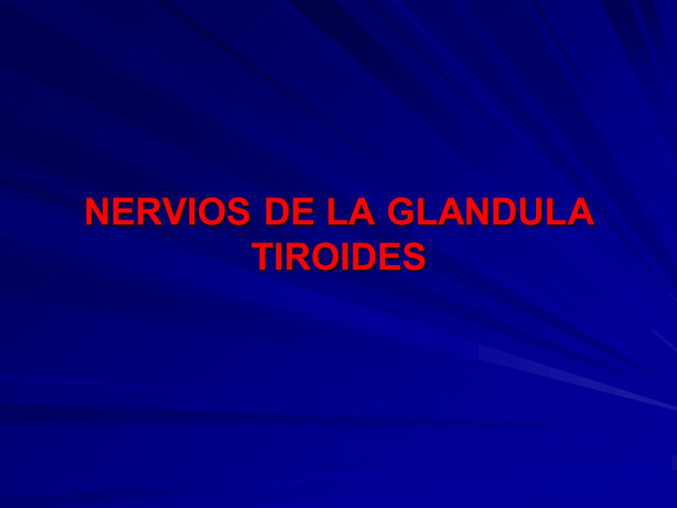 NERVIOS DE LA GLANDULA TIROIDES