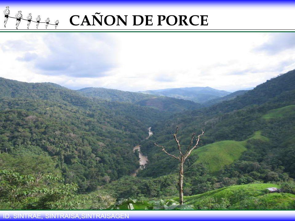 CAÑON DE PORCE ID. SINTRAE, SINTRAISA,SINTRAISAGEN