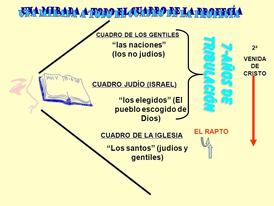 CUADRO DE LA IGLESIA CUADRO JUDÍO (ISRAEL) CUADRO DE LOS GENTILES Los santos (judíos y gentiles) las naciones (los no judíos) los elegidos (El pueblo