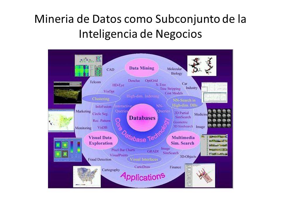 Mineria de Datos como Subconjunto de la Inteligencia de Negocios