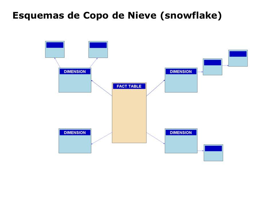 Esquemas de Copo de Nieve (snowflake)