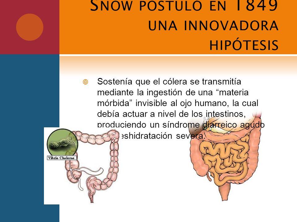 S NOW POSTULÓ EN 1849 UNA INNOVADORA HIPÓTESIS Sostenía que el cólera se transmitía mediante la ingestión de una materia mórbida invisible al ojo huma
