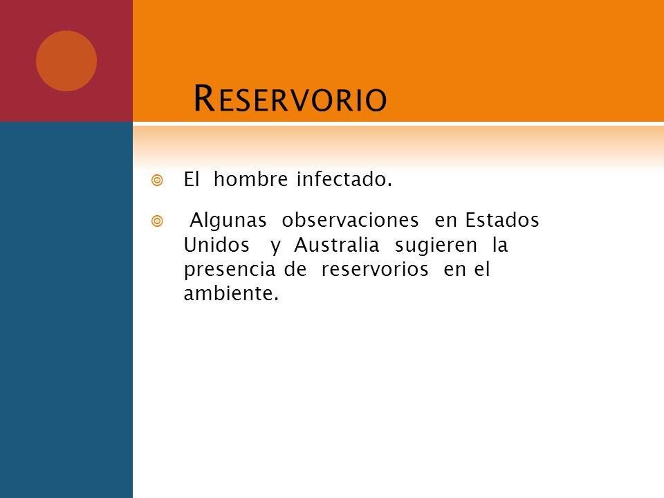 R ESERVORIO El hombre infectado. Algunas observaciones en Estados Unidos y Australia sugieren la presencia de reservorios en el ambiente.