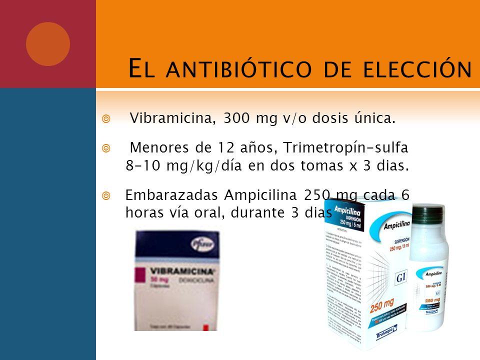 E L ANTIBIÓTICO DE ELECCIÓN Vibramicina, 300 mg v/o dosis única. Menores de 12 años, Trimetropín-sulfa 8-10 mg/kg/día en dos tomas x 3 dias. Embarazad