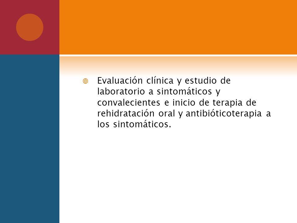 Evaluación clínica y estudio de laboratorio a sintomáticos y convalecientes e inicio de terapia de rehidratación oral y antibióticoterapia a los sinto