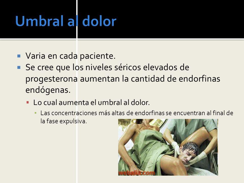 Anestesia Regional BLOQUEO PUDENDO Complicaciones Toxicidad sistémica grave, por Inyección IV.