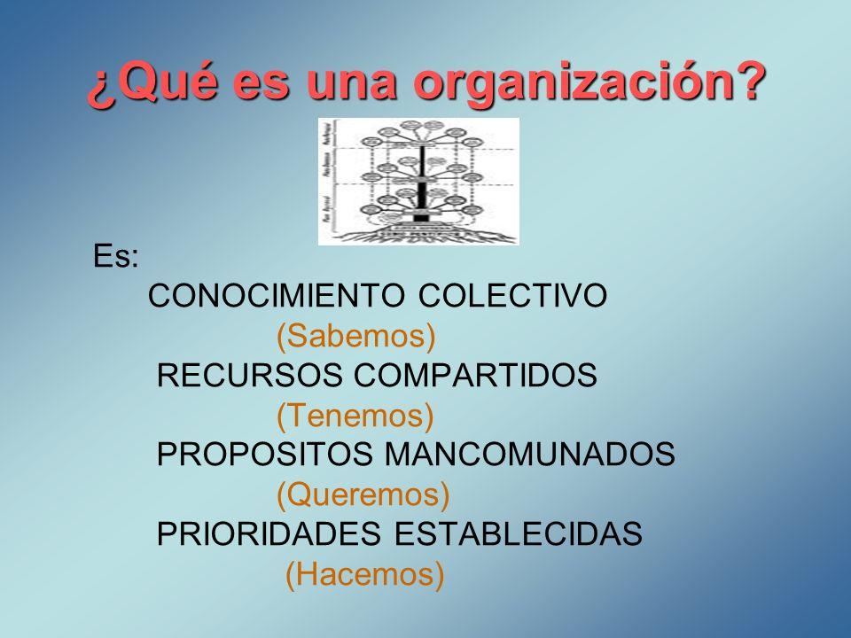 ¿Qué es una organización? Es: CONOCIMIENTO COLECTIVO (Sabemos) RECURSOS COMPARTIDOS (Tenemos) PROPOSITOS MANCOMUNADOS (Queremos) PRIORIDADES ESTABLECI