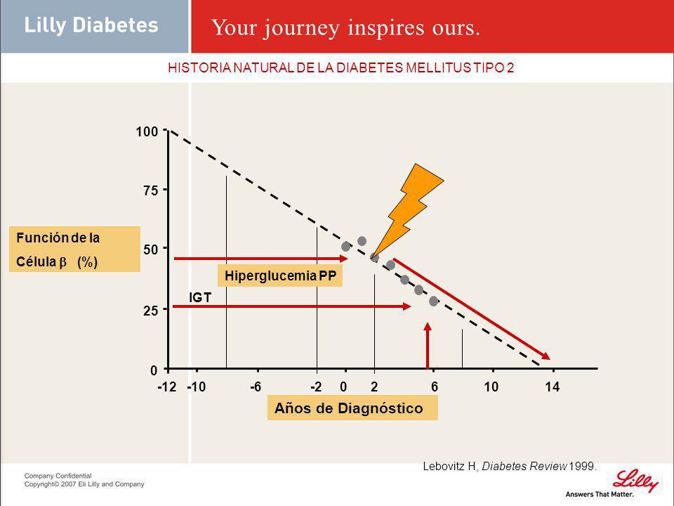 HISTORIA NATURAL DE LA DIABETES MELLITUS TIPO 2 Función de la Célula (%) Hiperglucemia PP IGT 25 100 75 0 50 -12-10-6-20261014 Años de Diagnóstico Leb