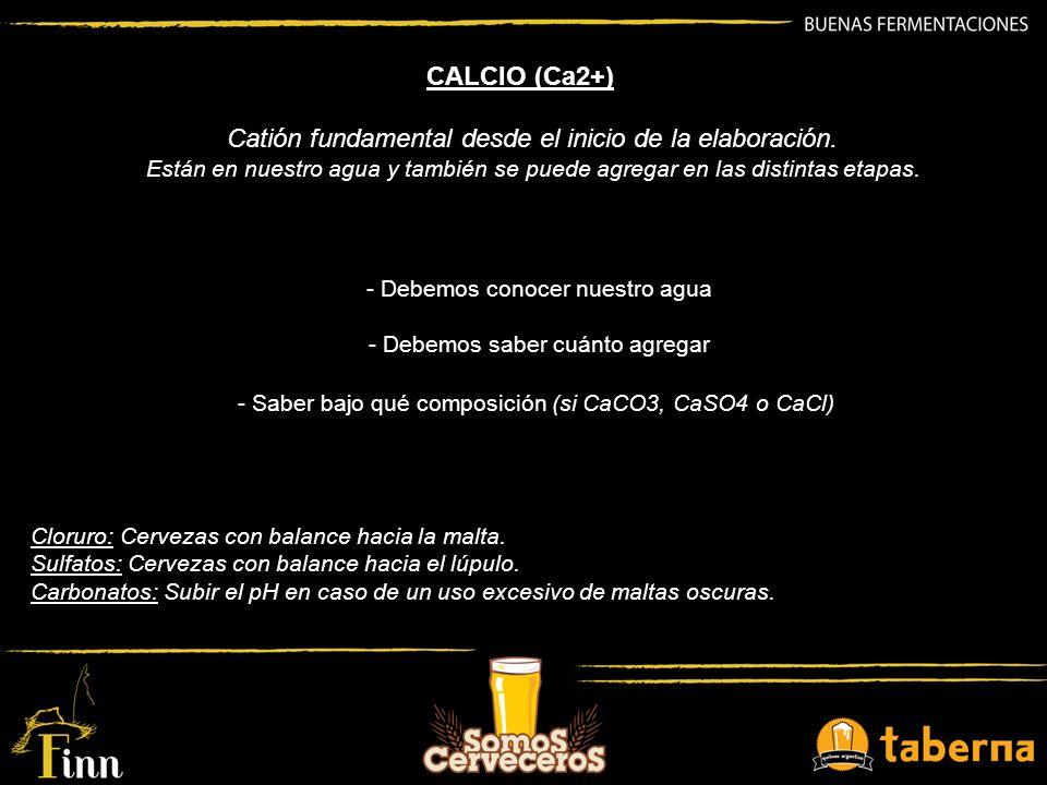 CALCIO (Ca2+) Catión fundamental desde el inicio de la elaboración. Están en nuestro agua y también se puede agregar en las distintas etapas. - Debemo