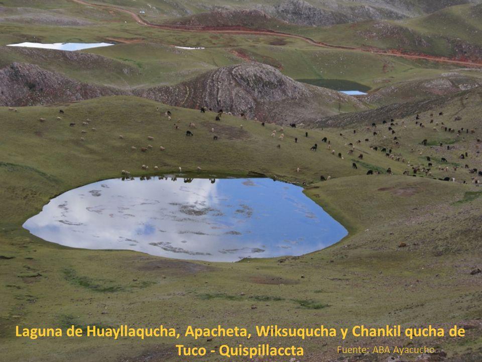 Laguna de Huayllaqucha, Apacheta, Wiksuqucha y Chankil qucha de Tuco - Quispillaccta Fuente: ABA Ayacucho