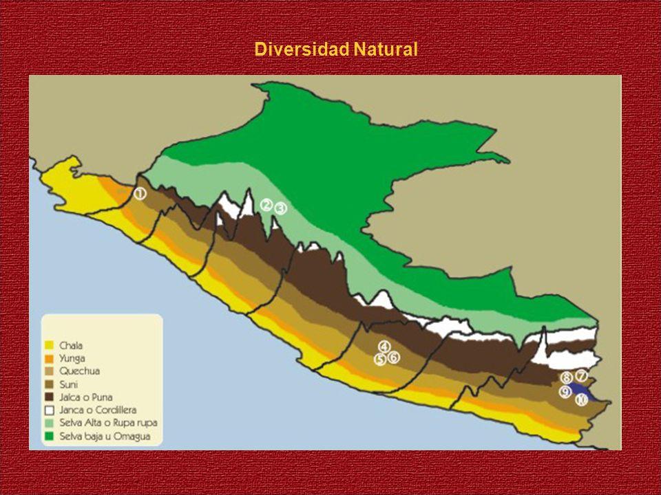 Diversidad Natural