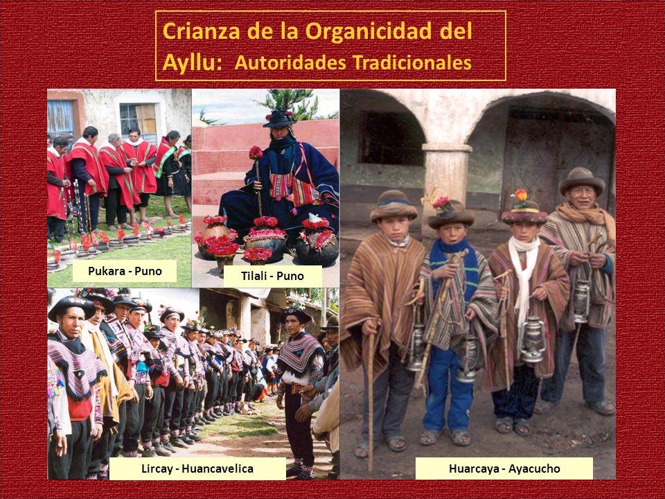 Crianza de la Organicidad del Ayllu: Autoridades Tradicionales Pukara - Puno Tilali - Puno Lircay - Huancavelica Huarcaya - Ayacucho