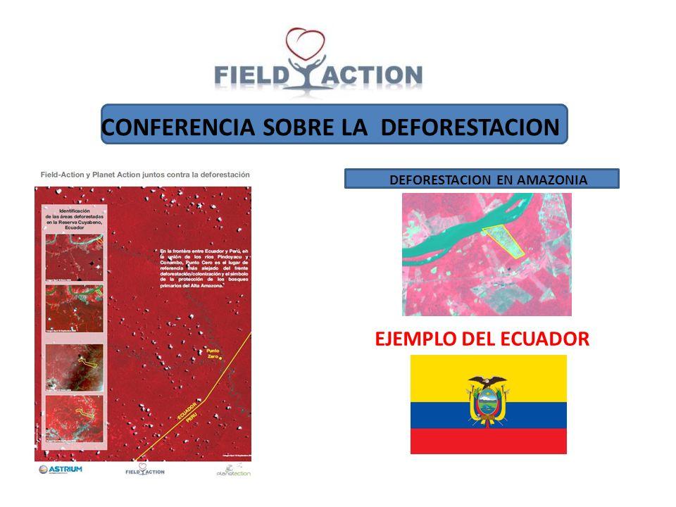 CONFERENCIA SOBRE LA DEFORESTACION DEFORESTACION EN AMAZONIA EJEMPLO DEL ECUADOR