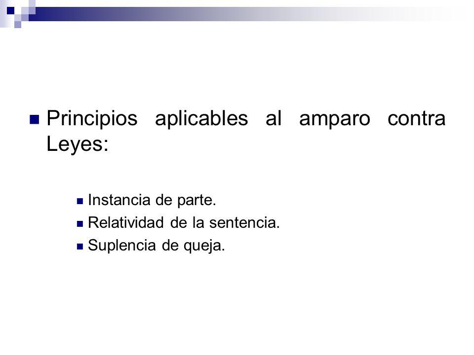 Principios aplicables al amparo contra Leyes: Instancia de parte. Relatividad de la sentencia. Suplencia de queja.