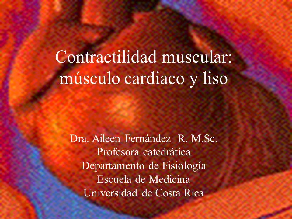 Contractilidad muscular: músculo cardiaco y liso Dra. Aileen Fernández R. M.Sc. Profesora catedrática Departamento de Fisiología Escuela de Medicina U