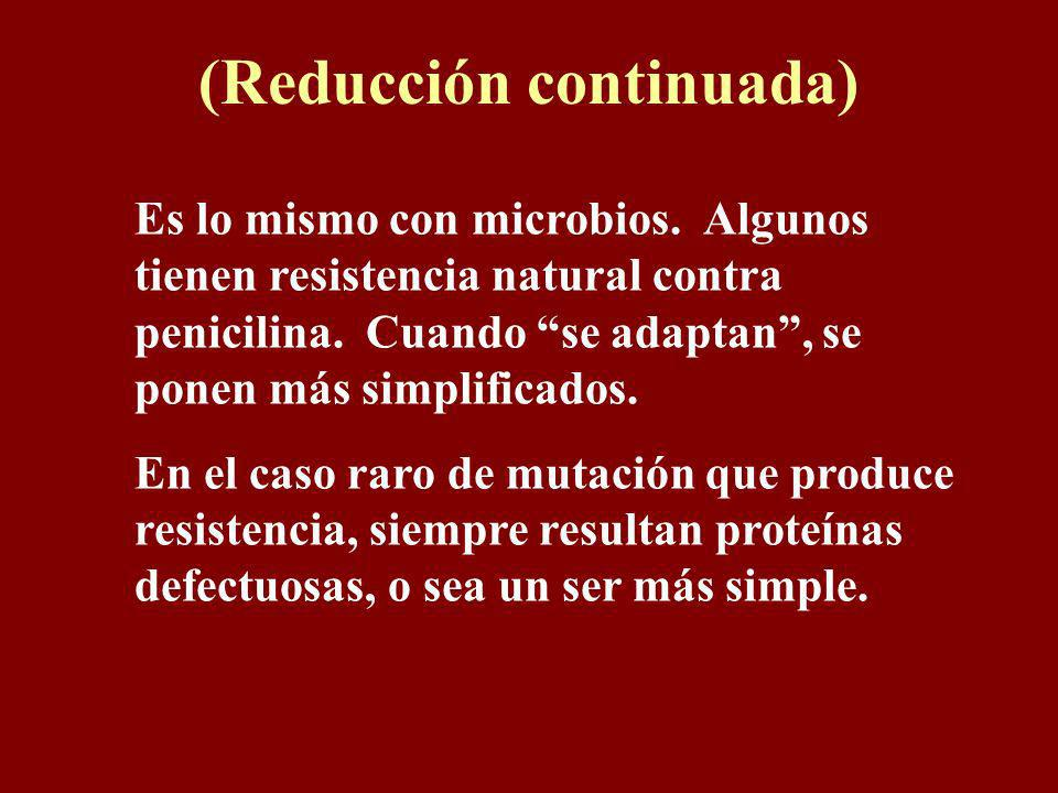 (Reducción continuada) Es lo mismo con moscas. Si los cromosomas del macho son RN (R= resistencia a una insecticida; N=no resistencia) y de la hembra