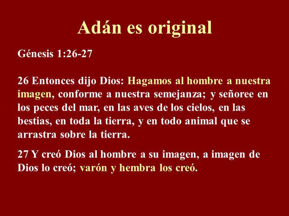 Génesis 1:1 En el principio Dios creó los cielos y la tierra. O sea, en el principio de la creación, Dios creó la tierra, más el resto del universo, o