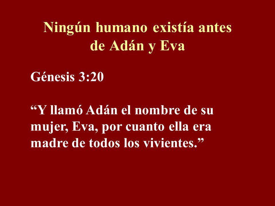 Polvo no es simbólico Génesis 3:19 Con el sudor de tu rostro comerás el pan hasta que vuelvas a la tierra, porque de ella fuiste tomado; pues polvo er